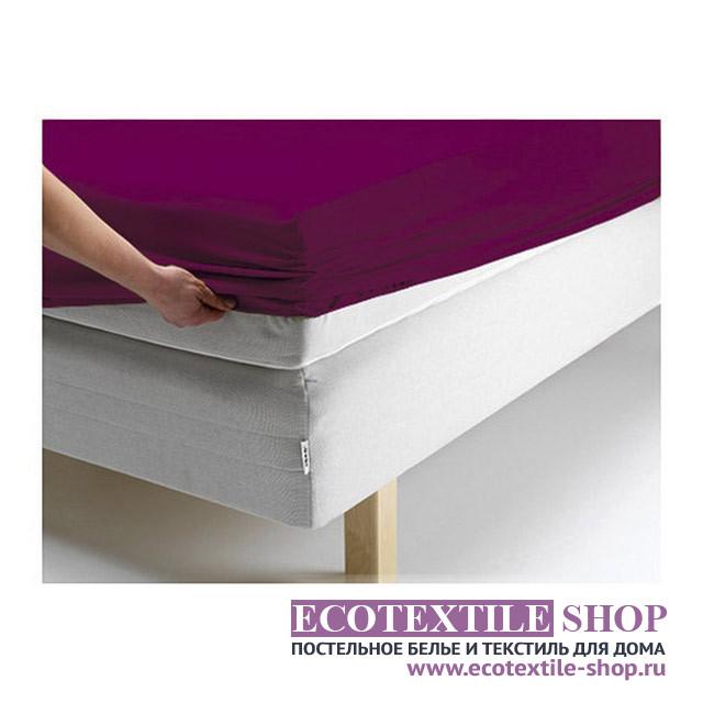 Простыня Ecotex джерси сливовая на резинке (размер 200х200 см)